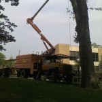 Commercial: Tree removal by crane  at Geneva College, Beaver Falls PA