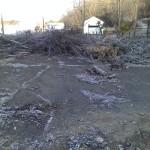 Municipal: Tree Removal in Eastvale Boro, Beaver Falls, PA